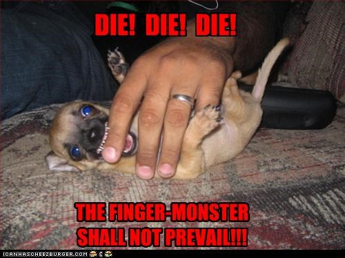 attack,bite,chihuahua,die,fingers,monster,puppy