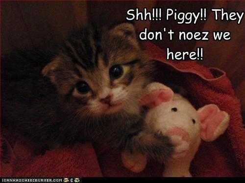cute kitten scared stuffed animal - 2597134592