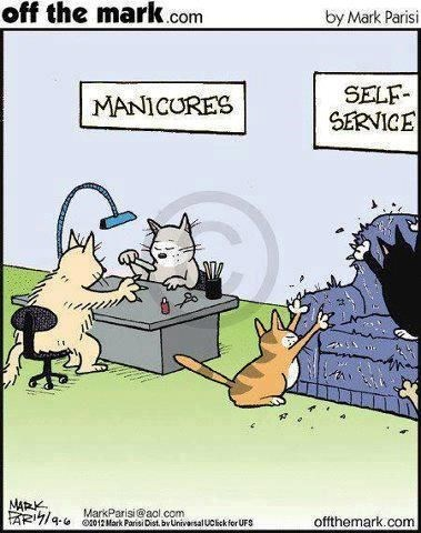 a funny comic of cats going to go get their nails done, one is getting their nails done by another cat, the other is at the self service station and scratching a couch - cover photo for a list of other funny comics about animals by artist mark parisi
