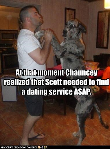 dancing,dating,great dane,human,service