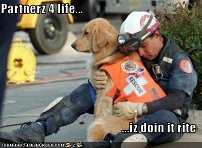 doin it rite golden retriever hug life mans-best-friend partner rescue service dogs work - 2601132288