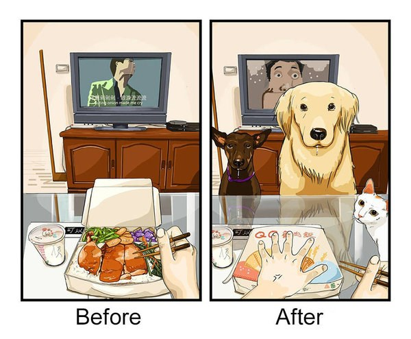comics showing the before and after of dog ownership