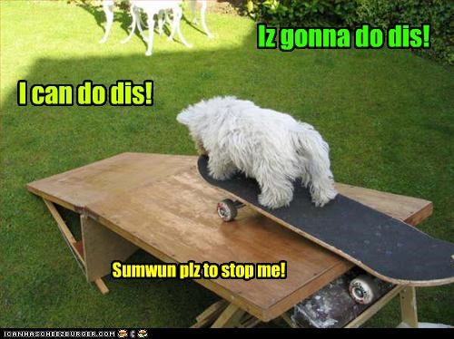 I can do dis! Iz gonna do dis! Sumwun plz to stop me!