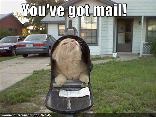 You Ve Got Mail Cheezburger Funny Memes Funny Pictures