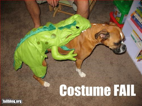 costume dinosaurs doggie style dogs humping - 2609474560