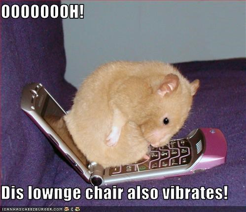 cellphone chair lolhamsters - 2611005184