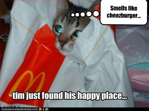 Cheezburger Image 2611084288
