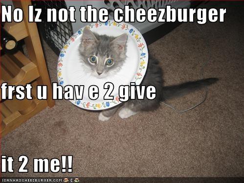 Cheezburger Image 2613414400