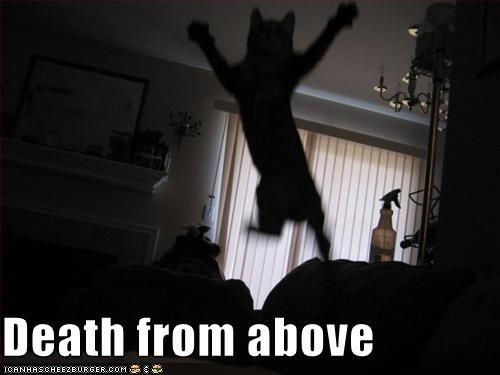 attacking jumping murder ninja - 2613687296
