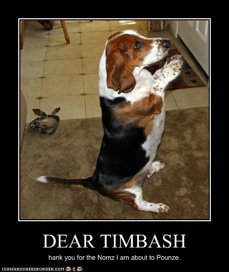DEAR TIMBASH hank you for the Nomz I am about to Pounze.
