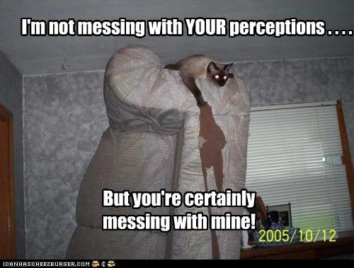 I'm not messing with YOUR perceptions . . . . But you're certainly messing with mine!