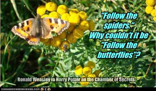 """""""Follow the spiders."""" Why couldn't it be """"Follow the butterflies""""? Ronald Weasley in Harry Potter an the Chamber of Secrets"""