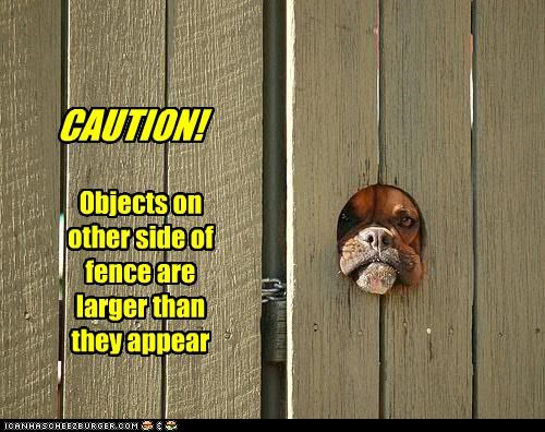 CAUTION! Objects on other side of fence are larger than they appear
