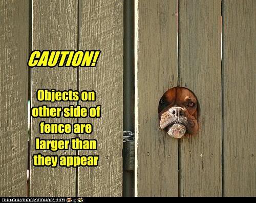 boxer caution fence hole large - 2620333312