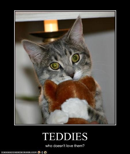 TEDDIES who doesn't love them?