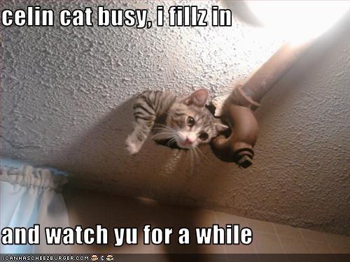 ceiling cat work - 2623868672