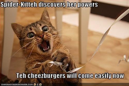 Cheezburger Image 2623986944