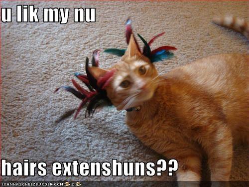 u lik my nu  hairs extenshuns??