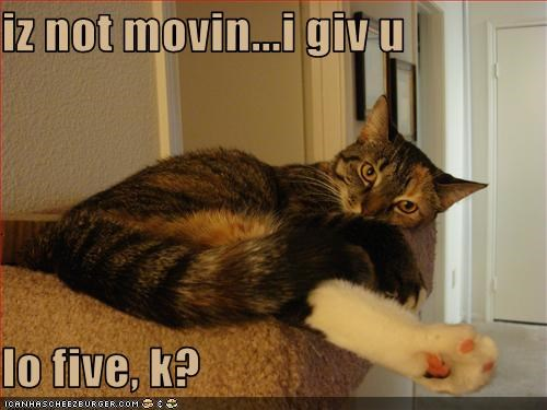 iz not movin...i giv u  lo five, k?