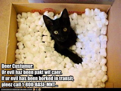 basement cat box cute ebay evil - 2627152896