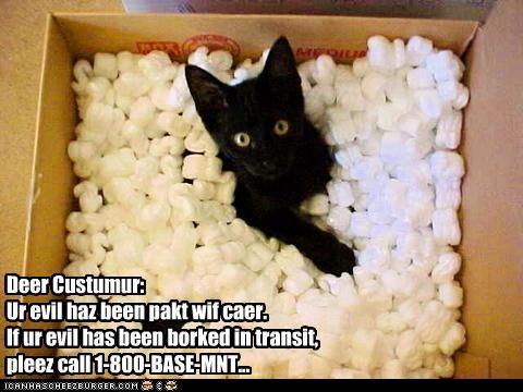 basement cat box cute ebay evil - 2627152896