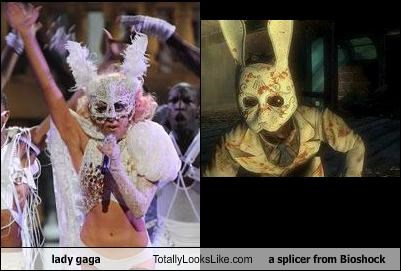 bioshock,bunny,lady gaga,rabbit,singers,video games