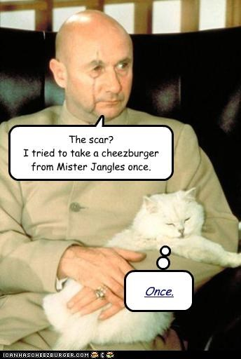 The scar? I tried to take a cheezburger from Mister Jangles once. Once.