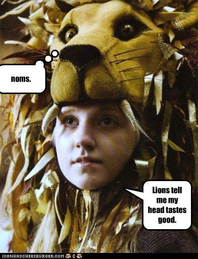 Lions tell me my head tastes good. noms.