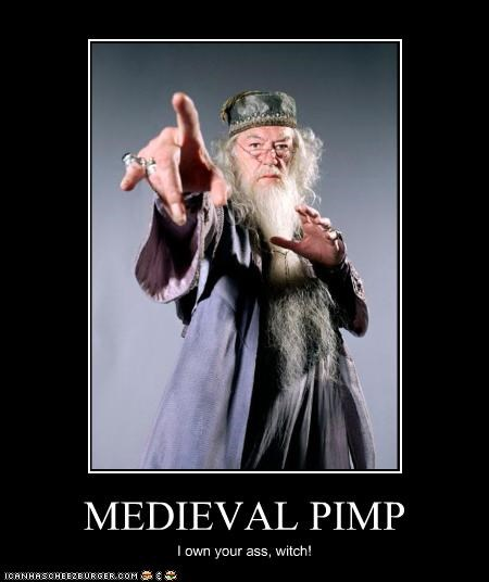 MEDIEVAL PIMP I own your ass, witch!