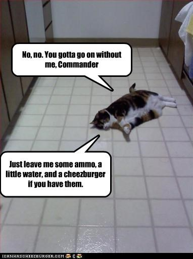 No, no. You gotta go on without me, Commander Just leave me some ammo, a little water, and a cheezburger if you have them.