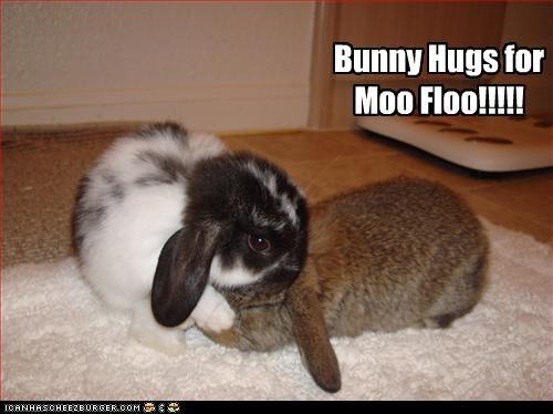 Bunny Hugs for Moo Floo!!!!!