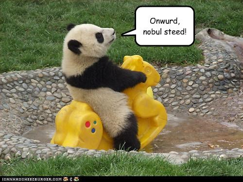cute lolpandas steed