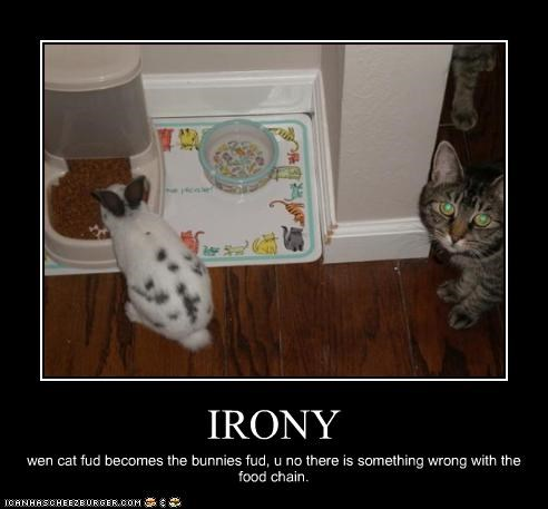 IRONY wen cat fud becomes the bunnies fud, u no there is something wrong with the food chain.