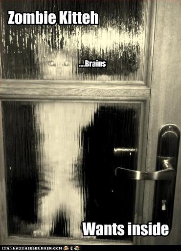 scary zombie apocalypse - 2637213184