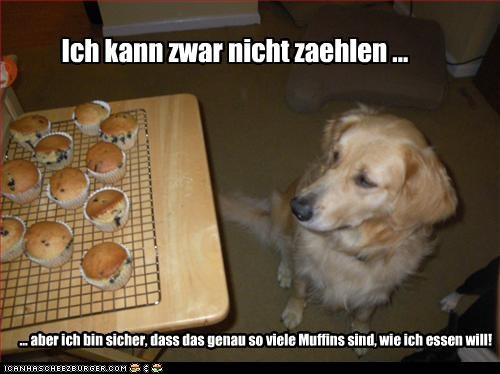 Cheezburger Image 2637921792