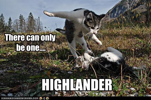 There can only be one.... HIGHLANDER