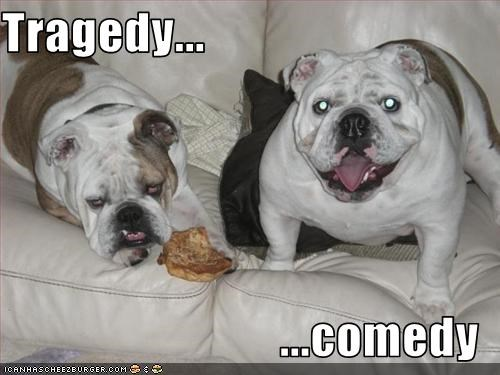 bulldog comedy face happy Sad tragedy