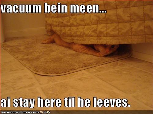 vacuum bein meen...  ai stay here til he leeves.