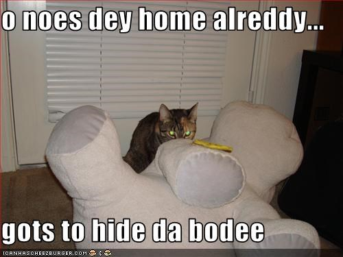 o noes dey home alreddy...  gots to hide da bodee