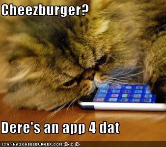Cheezburger Image 2643225856