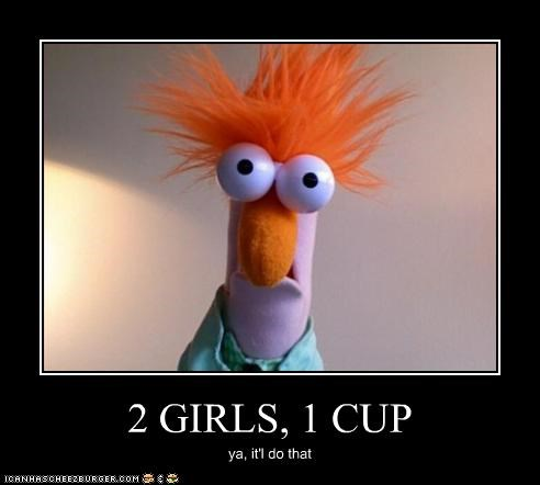 2 GIRLS, 1 CUP ya, it'l do that
