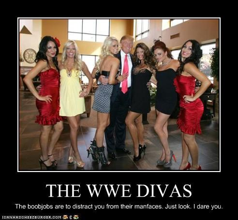 THE WWE DIVAS The boobjobs are to distract you from their manfaces. Just look. I dare you.