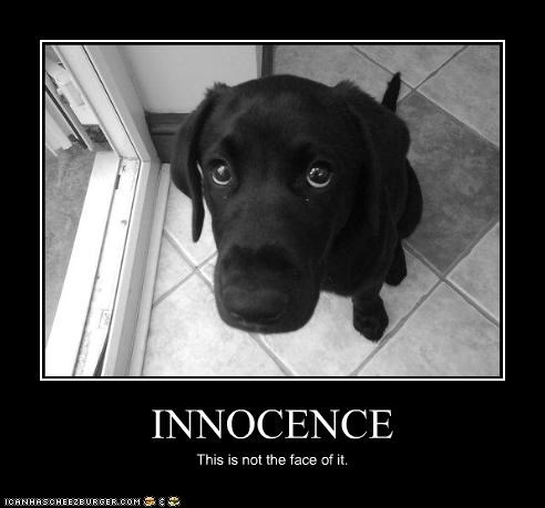 INNOCENCE This is not the face of it.
