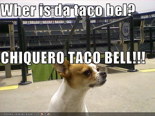 Cheezburger Image 2646925056