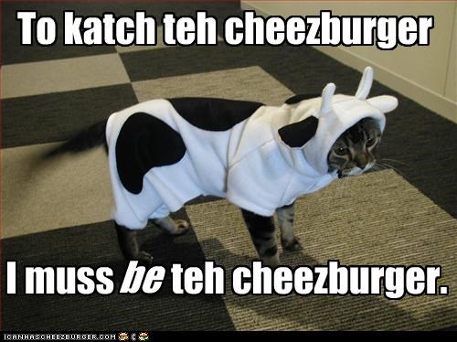 cheezburger,costume,cow,hunting,plotting