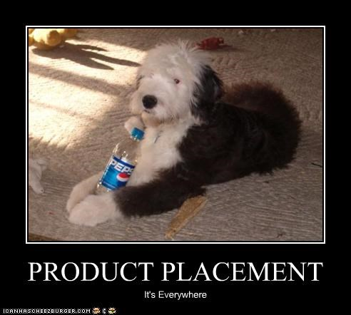 bottle drink english sheepdog pepsi placement products soda