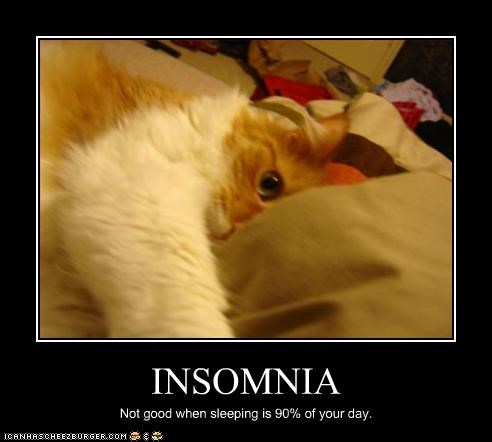 awake,do not want,insomnia,nap