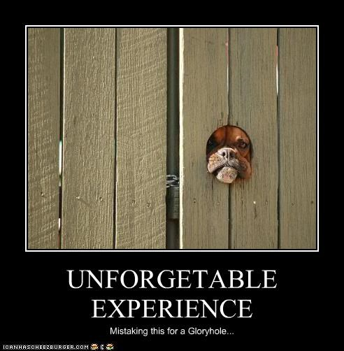 UNFORGETABLE EXPERIENCE Mistaking this for a Gloryhole...