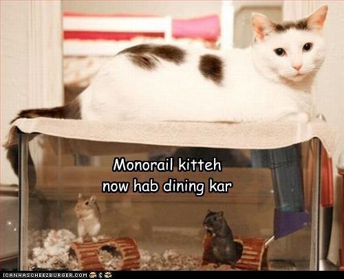 lolmice,monorail cat,murder,nom nom nom