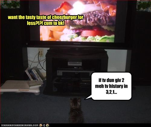 Cheezburger Image 2660320256
